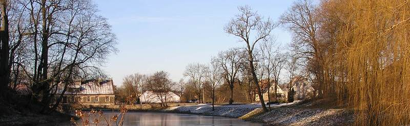 Winter on the Manor Lake in Kretinga